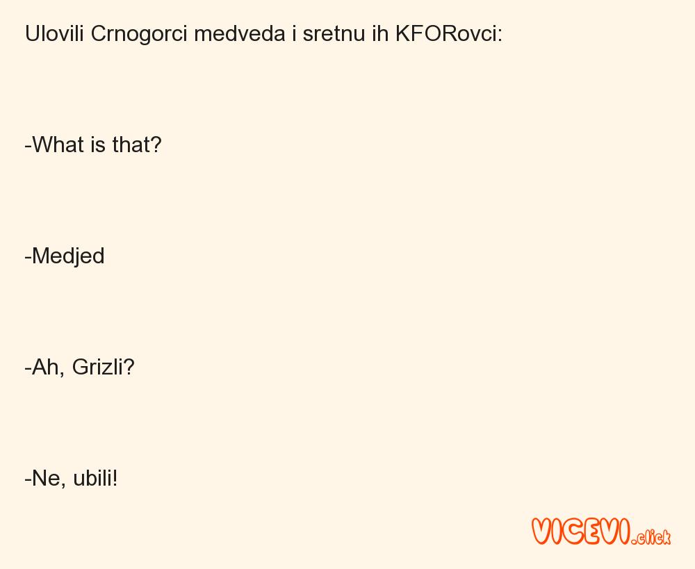 Ulovili Crnogorci medveda i sretnu ih KFORovci:-What is that?